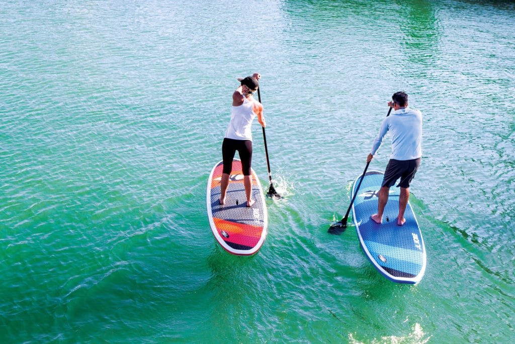 man and woman on stand up paddle boards